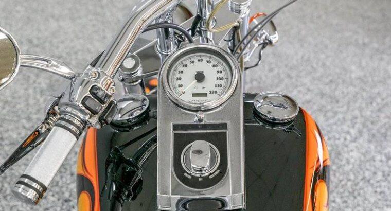 2004 Harley-Davidson Custom for Sale