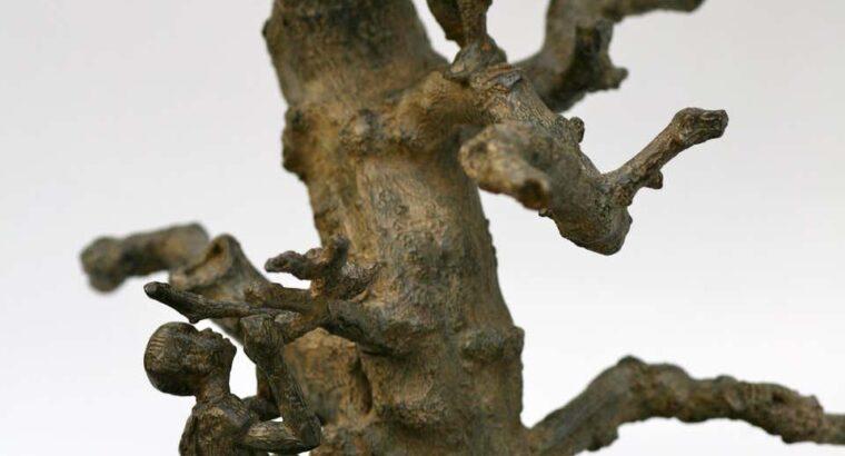 Marine de Soos Tree With Children