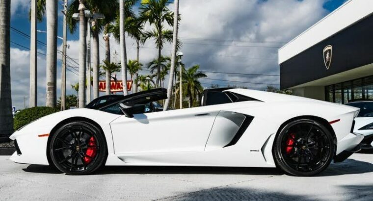 Magnificent 2014 Lamborghini Aventador LP 700-4 Roadster