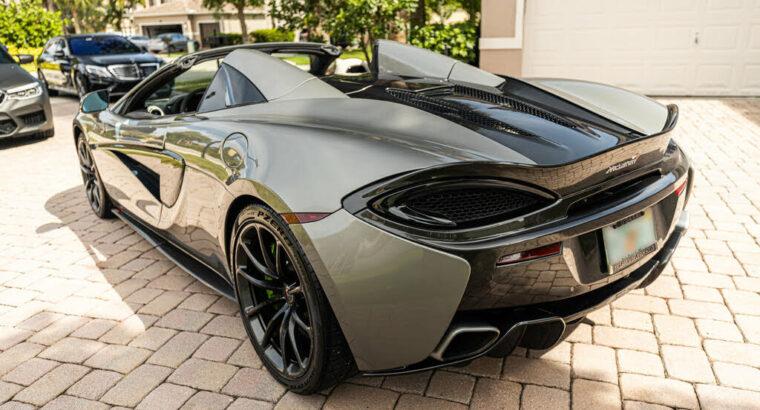 Striking 2018 McLaren 570S Spider RWD
